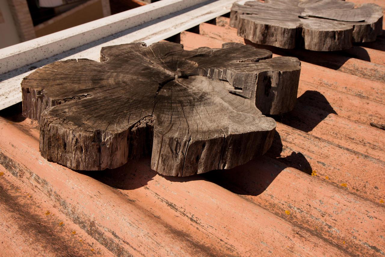 ART137 madeira