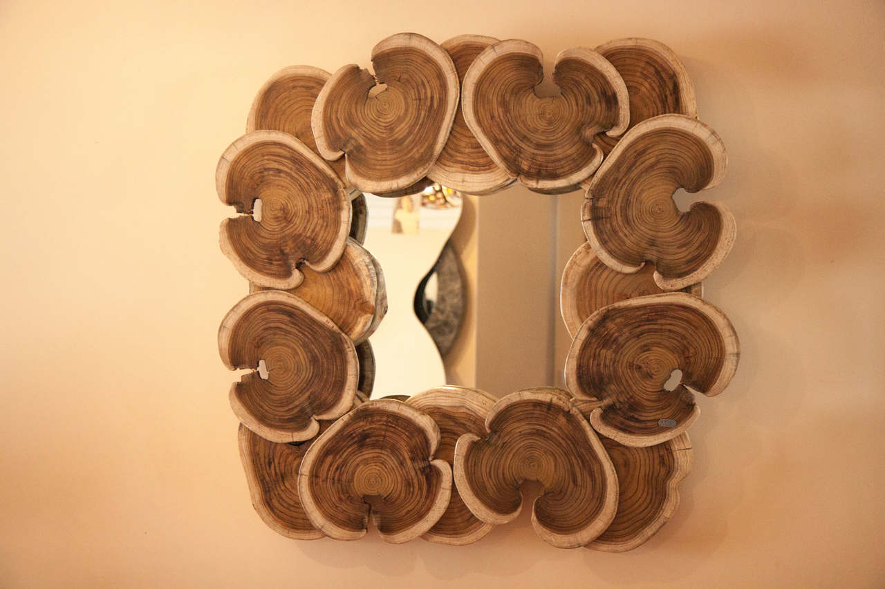 Wood Mirror | bromeliaI