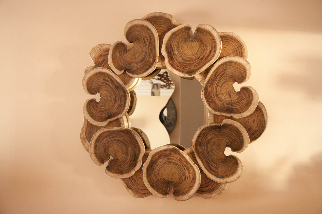 Wood Mirror | bromeliaII